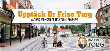 Dr Fries Torg